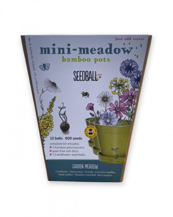 Seedball Mini Meadow