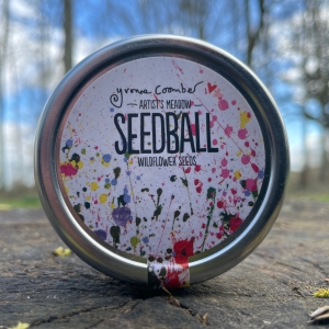 Seedball - Artist Meadow Mix