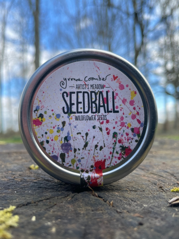 Seedball - Artist Meadow Mix