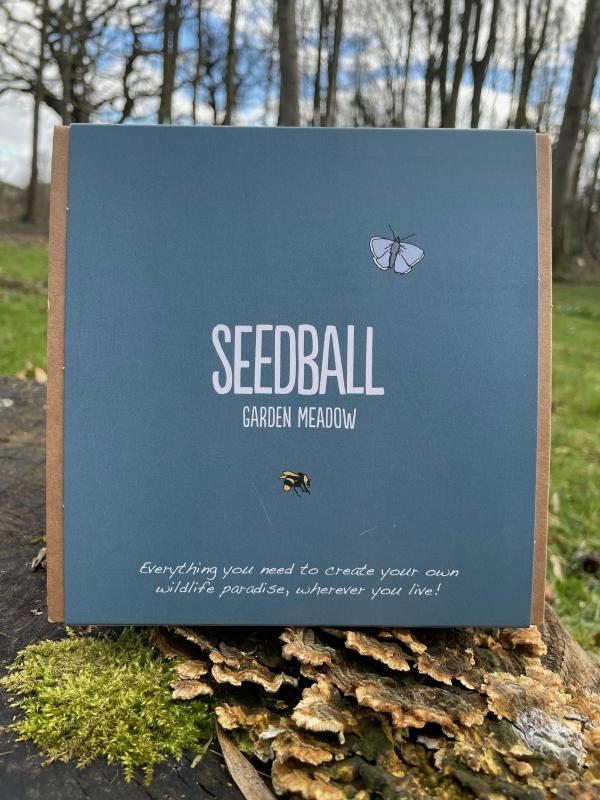Seedball - Mini Meadow (Garden meadow mix)