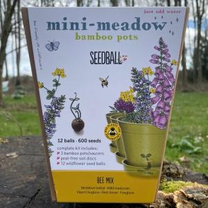 Bee Mix - Mini Meadow