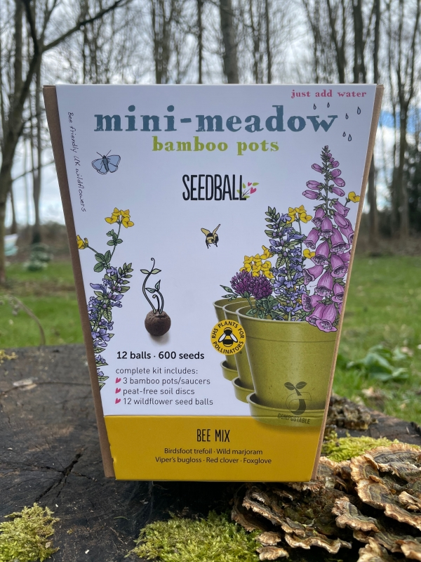Bee Mix - Mini Meadow