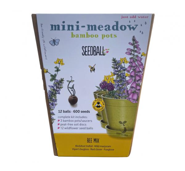 Seedball Mini Meadow - Bee Mix