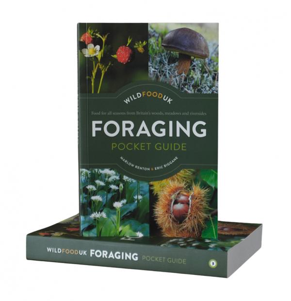Foraging Pocket Guide