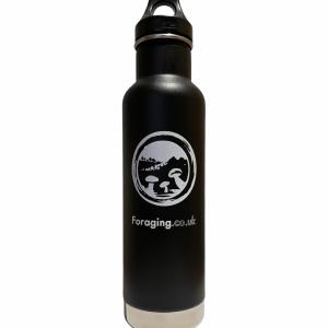 Klean Kanteen Classic Insulated Bottle